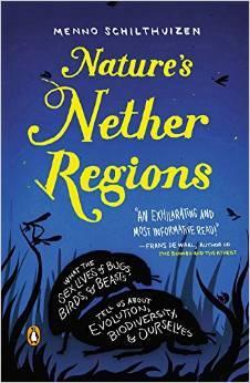 nether-regions