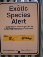 exotic_species_alert_for_mississippi_river_from_minnesota_department_of_natural_resources